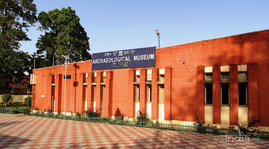 Archaeological Site Museum, Ropar