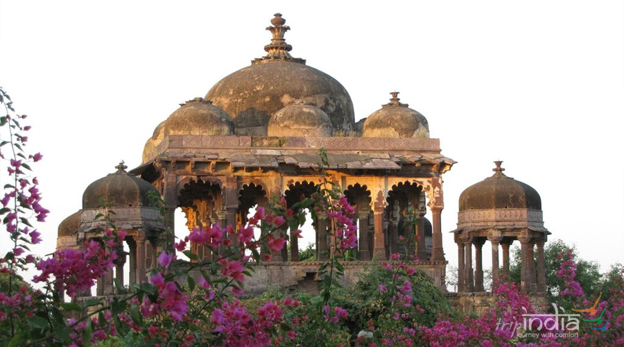 Ranthambore Fort